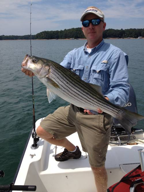 Finally uponlanier lake lanier fishing forum for Lake lanier striper fishing