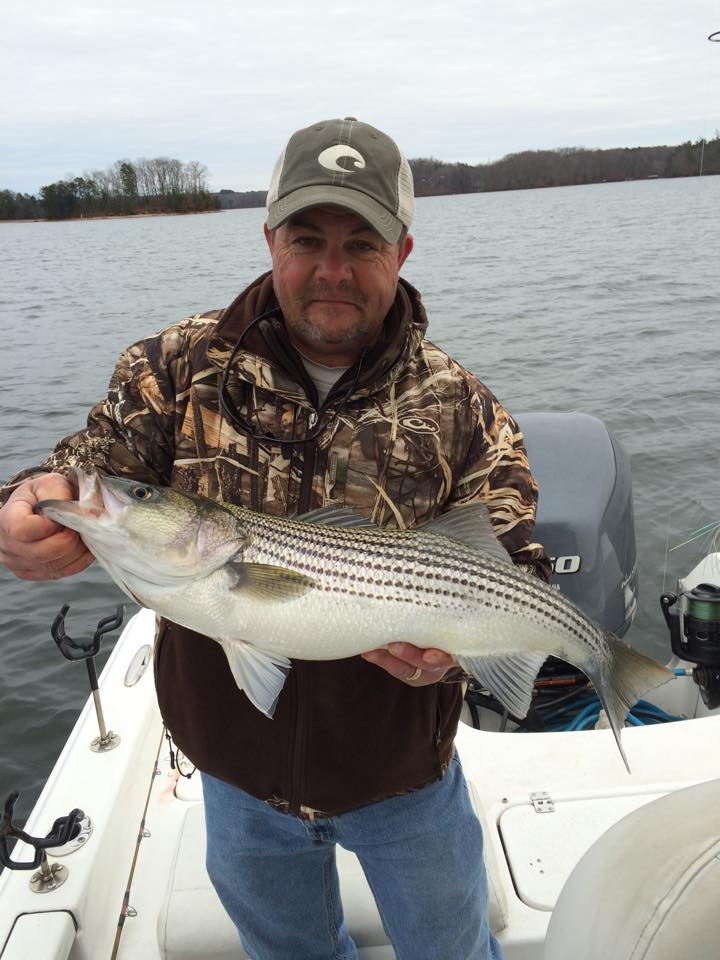 January 3 2015 uponlanier lake lanier fishing forum for Lake lanier striper fishing